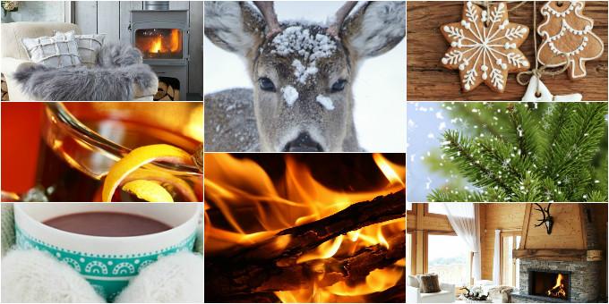 winter v-i-s website 2