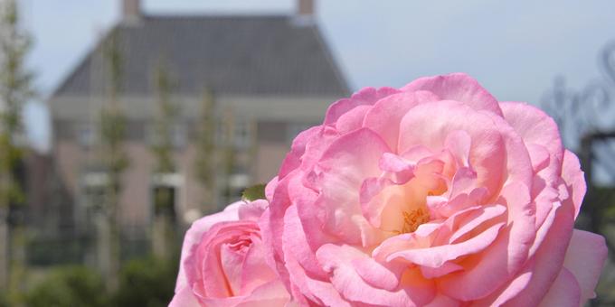 trainen warm welkom voor Manon in Holland